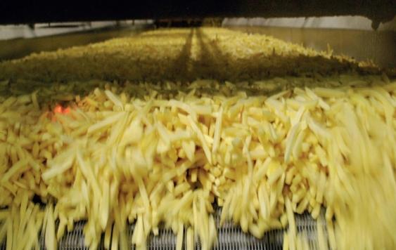 Door de hogere doorvoersnelheid wordt er nu 15ton aardappelen per uur verwerkt