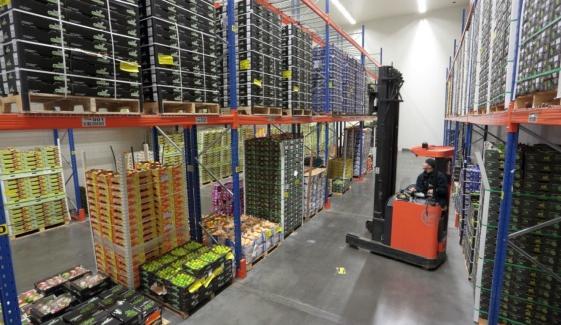 In metershoge rijpkamers stockeert het bedrijf zijn uitheemse groente- en fruitsoorten, om ze uiteindelijk eetrijp uit te voeren naar de retailers en foodservicebedrijven