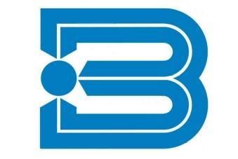 logo buhlmann
